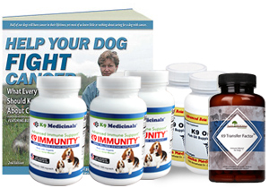 Large Breed Cancer Care Kit