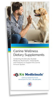Canine Wellness Brochure