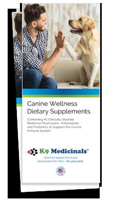 Canine Wellness Brochure